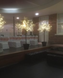LED Trees for Hire