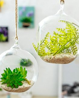 Hanging Flower bubble